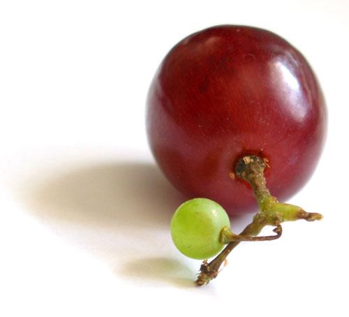 http://sethtaylor.com/b2/wp-content/uploads/2006/07/peculiar_grape.jpg