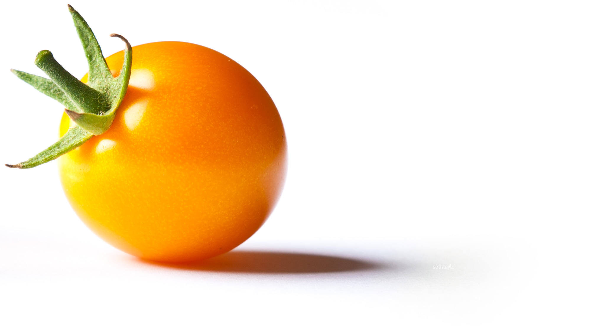 sunglow tomato - free to use image
